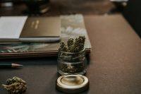 efectos económicos de la legalización del cannabis