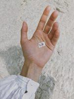 rfdi microchip