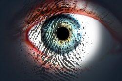 sistema biométrico de pago