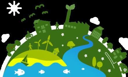 Conoce la economía verde y su importancia